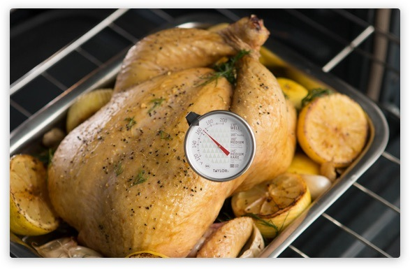 Turkey with thermometer
